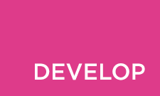 develop stage, product development
